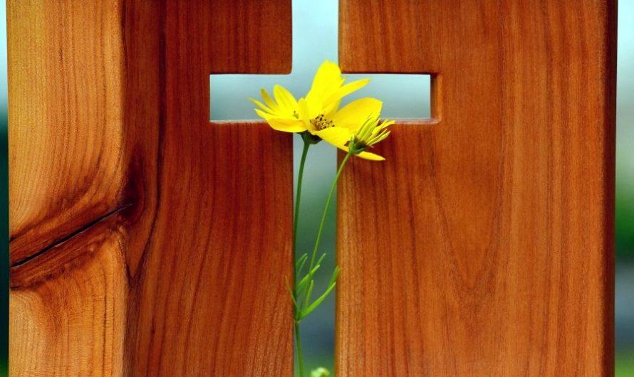 Aandacht helpt; kerken in Hilversum